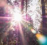 sun.readings..jpg
