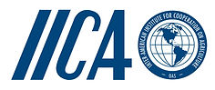 IICA-Logo-Social-Communications.jpg