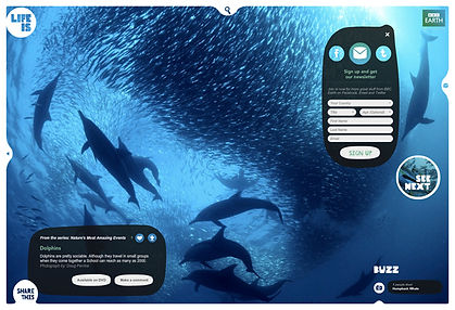 BBC LifeIs-web1.jpg