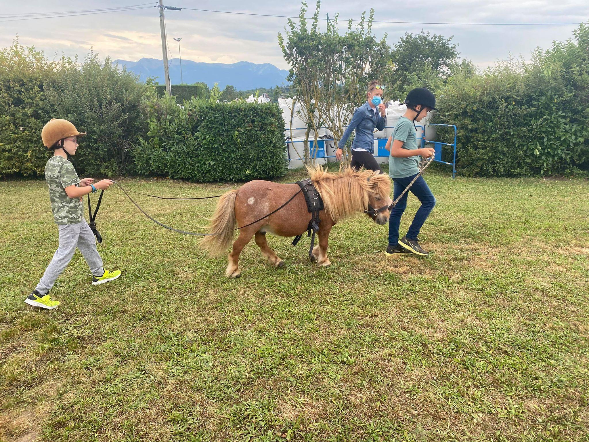 stage poney 9-12 ans