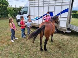 stage poney 6-8 ans