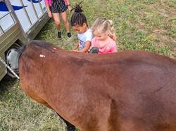 stage poney 3-5 ans