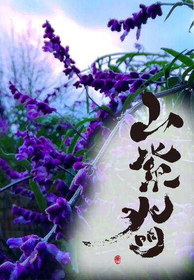 山紫水明🔮🔮🔮
