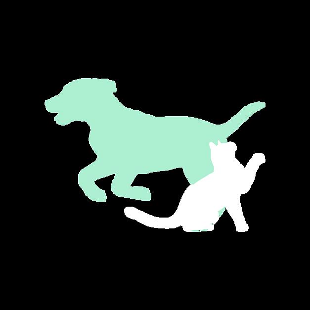 S-VETOSS Cat & Dog