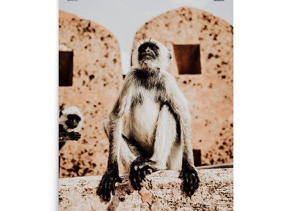 Monos Print