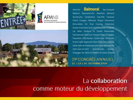 Rapport annuel 2018 - 29e Congrès annuel: La collaboration comme moteur du développement