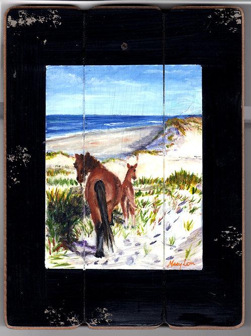 Chicoteague Island Horses