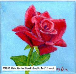18-35-Ola'sGarden-Rose2-4x4-acrylic