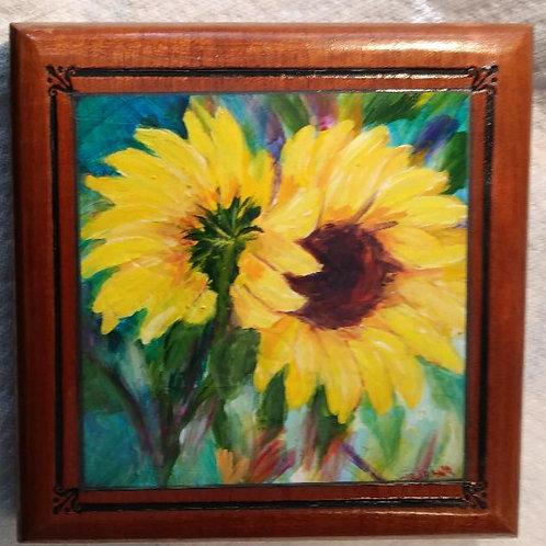 Pretty Sunflowers on Green