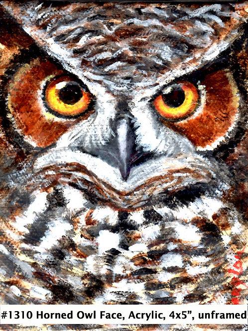 Horned Owl Face