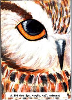 18-06-OwlsEye-4x5-Acrylic