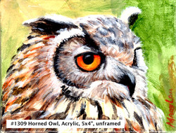 18-09-HornedOwl-5x4-Acrylic