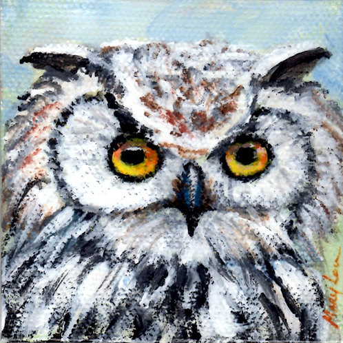 White Owl Face