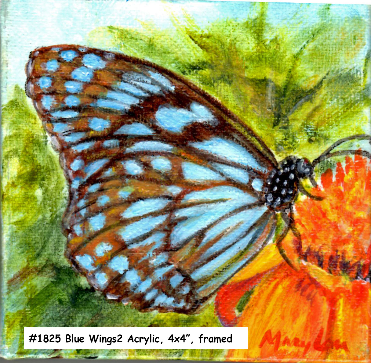 18-25-Blue Wings2-4x4-acrylic