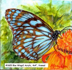 18-25-Blue Wings2-4x4-acrylic
