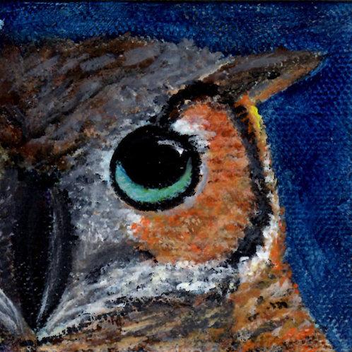 Horned Owl Face 1