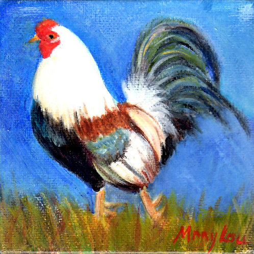 Bluetailed Rooster Struttin'