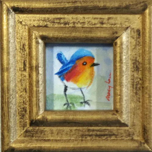 Baby Eastern Blue Bird