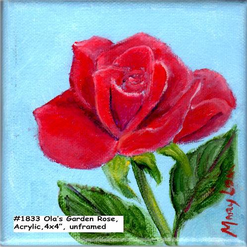 Ola's Garden-Red Rose 1