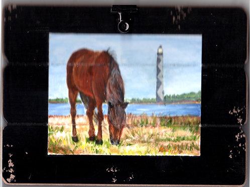 Chicoteague Island Horse #5
