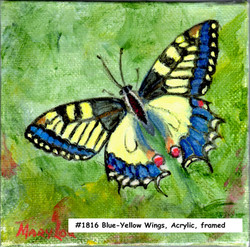 18-16-Blue-YellowWings-4x4-acrylic