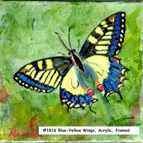 Blue & Yellow Wings