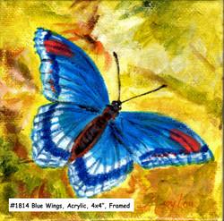 18-14-BlueWings-4x4-acrylic