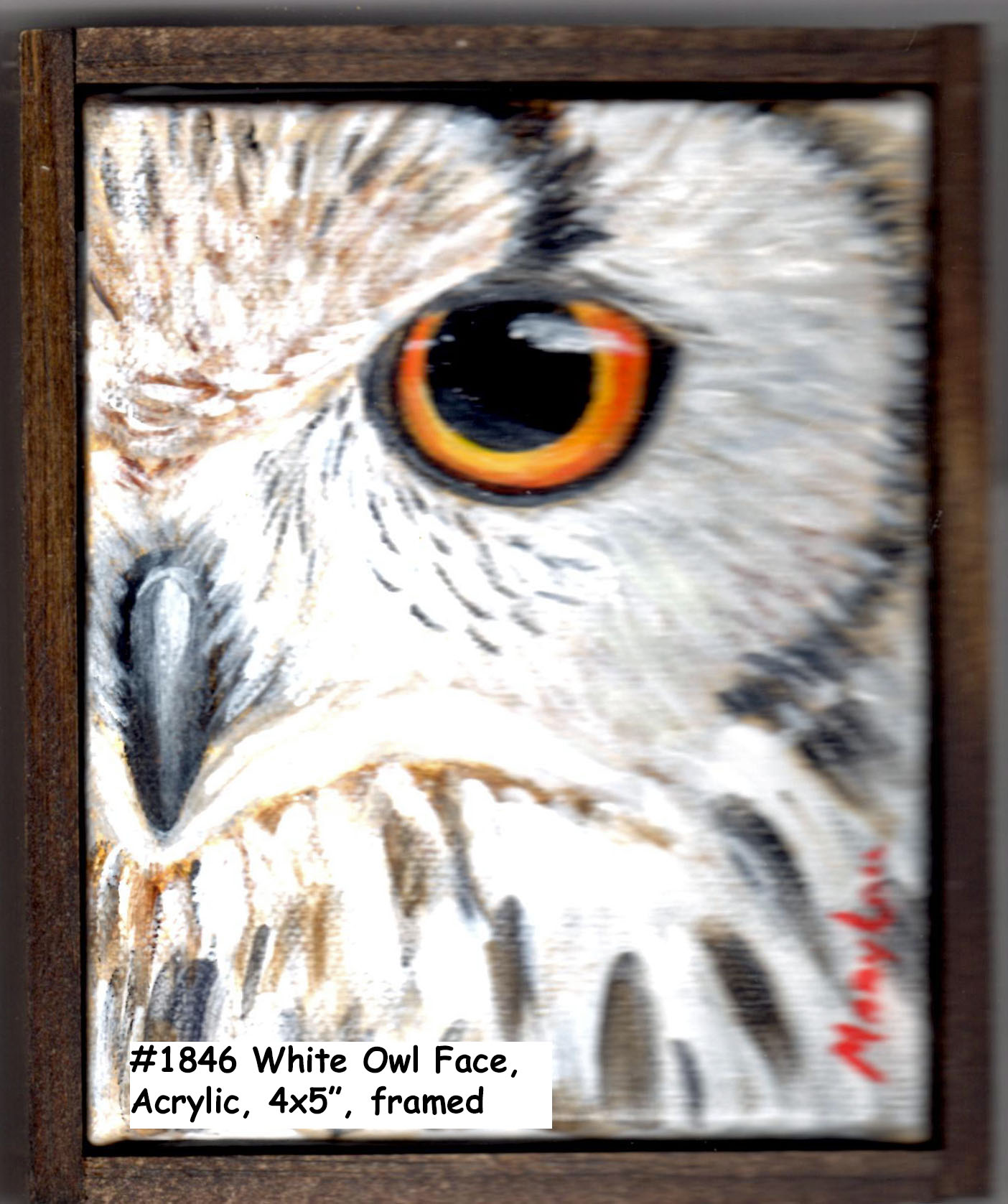 18-46 WhiteOwl-Eye-4x5in frame