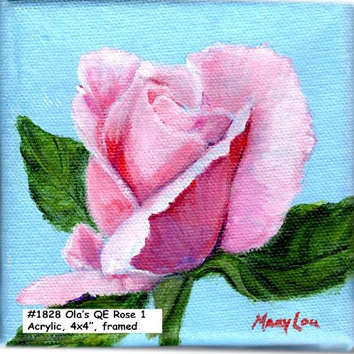 Ola's Garden-Queen Elizabeth Rose 1