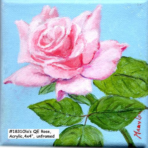 Ola's Garden-Queen Elizabeth Rose