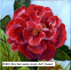 18-23-Ola'sRedCamelia-4x4-acrylic