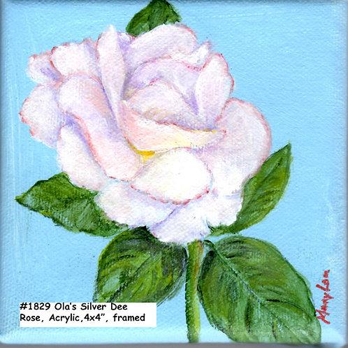 Ola's Garden-Silver Dee Rose