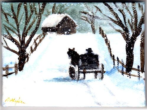 Homeward Bound in the Snow