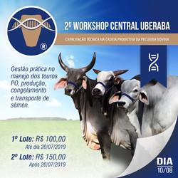 CANAIS_DIGITAIS_-_2º_Workshop_Central_Ub