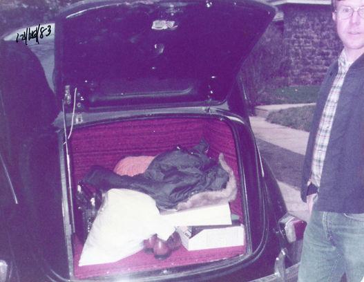38 trunk.jpg