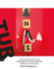 AMAZING MAGAZINE Pages singles11.jpg