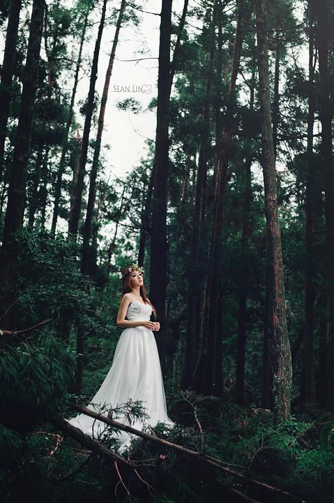 楓凌小徑/自主婚紗/黑森林