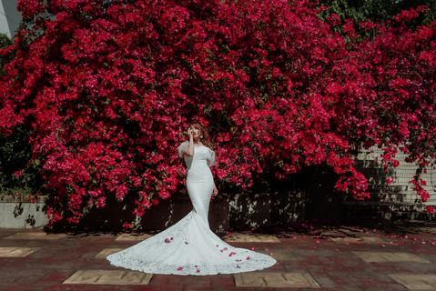 楓凌小徑|自助婚紗|婚紗|花牆