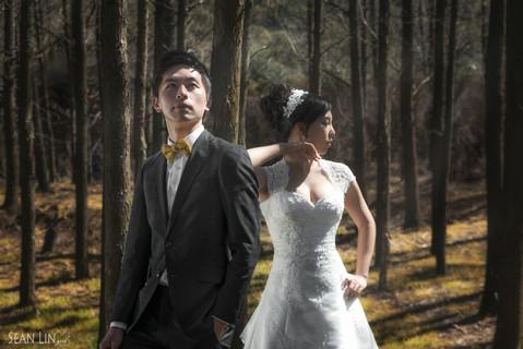 楓凌小徑/自助婚紗/婚紗攝影/陽明山/Pre-Wedding