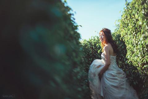 楓凌小徑 自主婚紗 自助婚紗