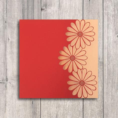 red daisies.jpg