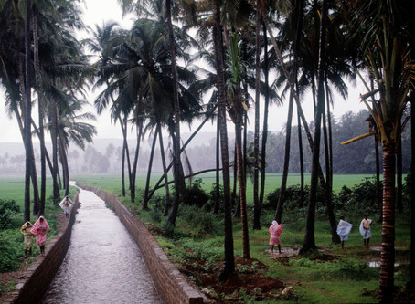 Goa monsoon 2020  part 1