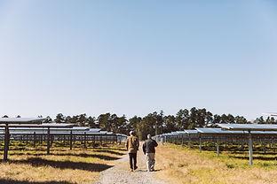 quickedits_solarpark-49.jpg