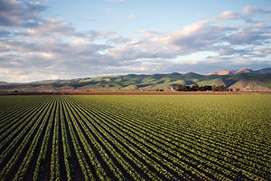 photo-of-green-field-near-mountains-9743
