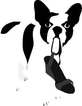 Léon le chien Comptoir des cotonniers