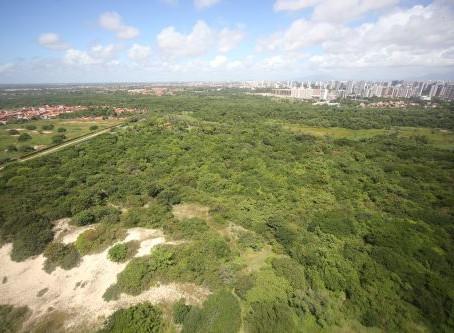 O Povo: Áreas de dunas ficam de fora da regulamentação do Parque do Cocó