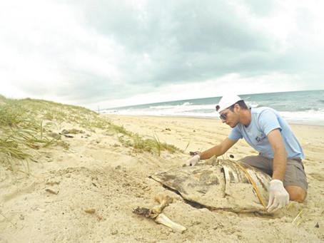 Diário do Nordeste: Projeto garante proteção na Praia da Sabiaguaba