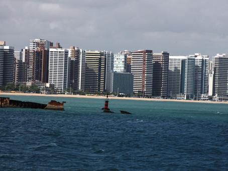 Prefeitura de Fortaleza promove atividades em defesa da fauna urbana e marinha