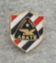 Chapter Pin