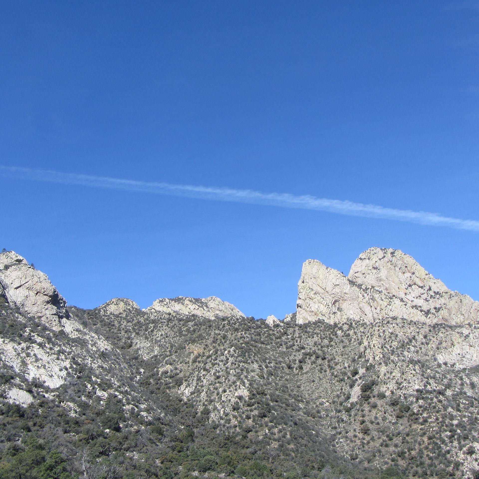 Montagne Organ